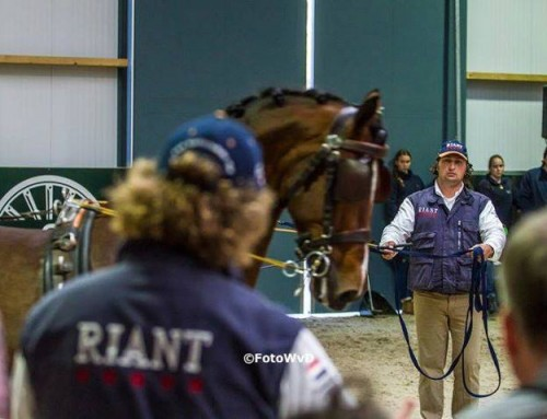 Riant Paard & Koets Program