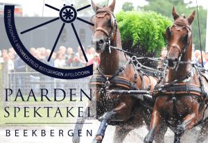 Paardenspektakel Beekbergen