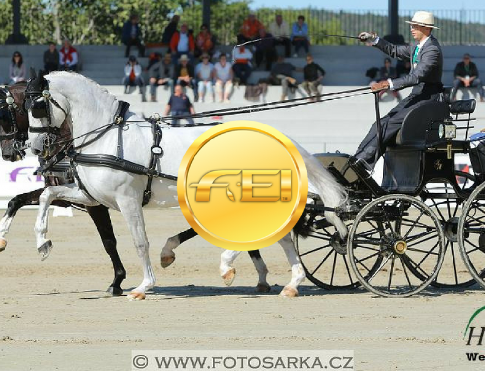 FEI World Driving Championships for Pairs Lipica: and the winner is…