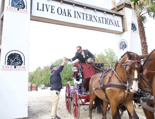 Clinics Riant in advance of Live Oak of USEF driving