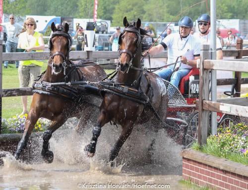 Horse Driving Kronenberg: tevreden over de paarden