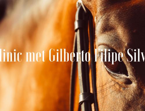 Clinic met Gilberto Filipe Silva